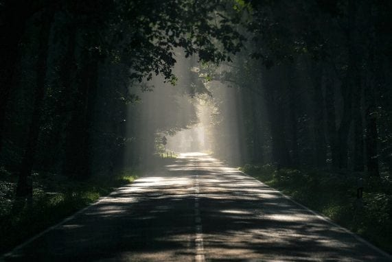 Greatness: my perception, street leading to a path with sunlight shining on the path